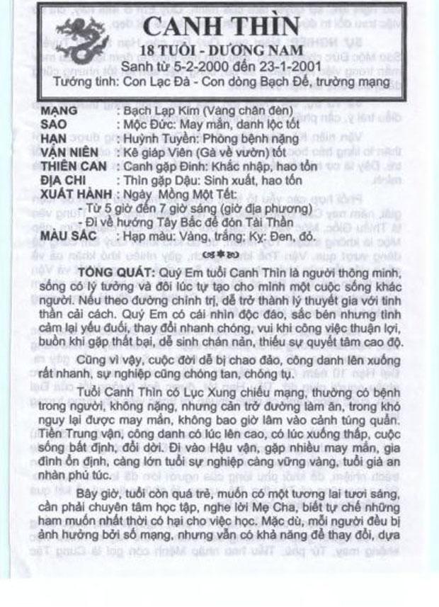 Tuổi Canh Thìn Năm 2017 Nam Mạng